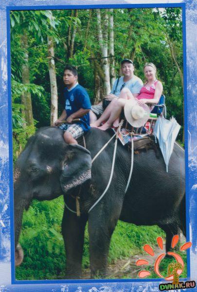 Тайланд экскурсия на слонах 2012